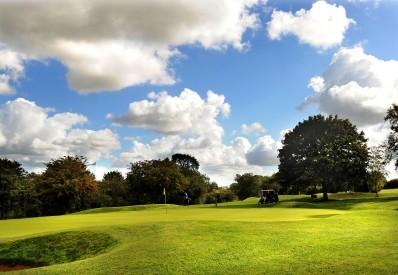 Golf 11small