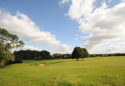 Golf 12small