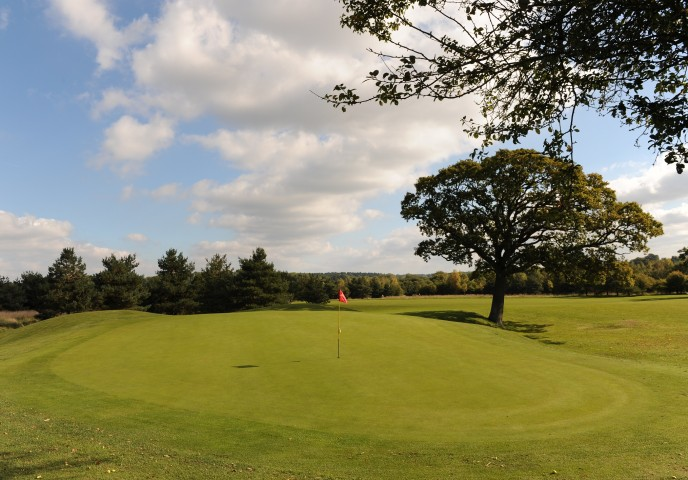 Golf 19small