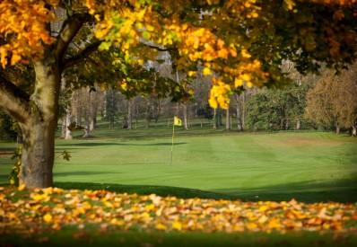 Golf 2small