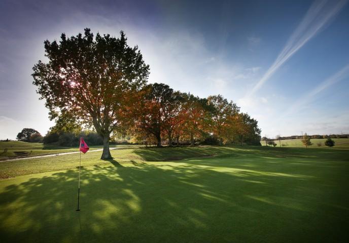 Golf 3small