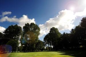 Golf 9small