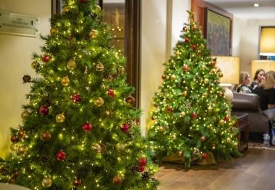 Christmas Breaks at Barnham Broom