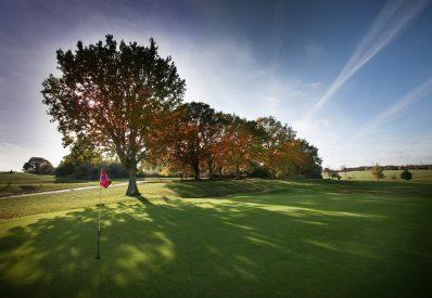 Golf-3small